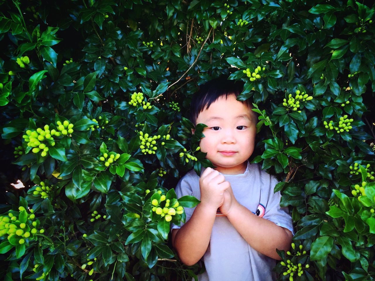 Beautiful stock photos of cute, Asian And Indian Ethnicities, Boys, Childhood, Cute