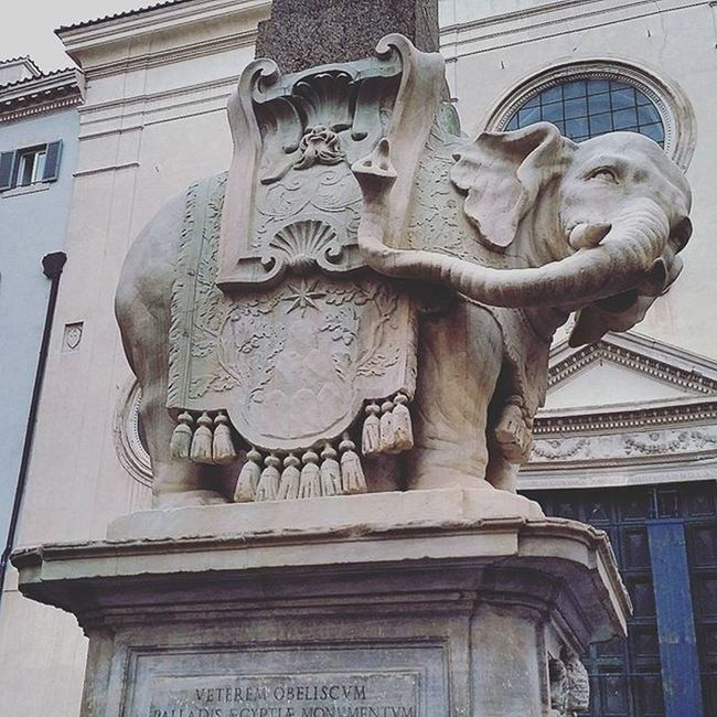 Dettaglidiroma LOVES_ROMA_ LOVES_LAZIO_ LOVES_UNITED_LAZIO Loves_lazio Loves_united_roma Loves_roma Igersroma Visitroma Myrome Lazioisme Igersitalia Volgoroma Volgoitalia Bestlaziopics Bestitaliapics Rionideroma Visititalia Earth_escape Mylittleitaly Cometorome Rome Italy Elefante  Animals scultura cool instagood italy obelisco cool instamoment