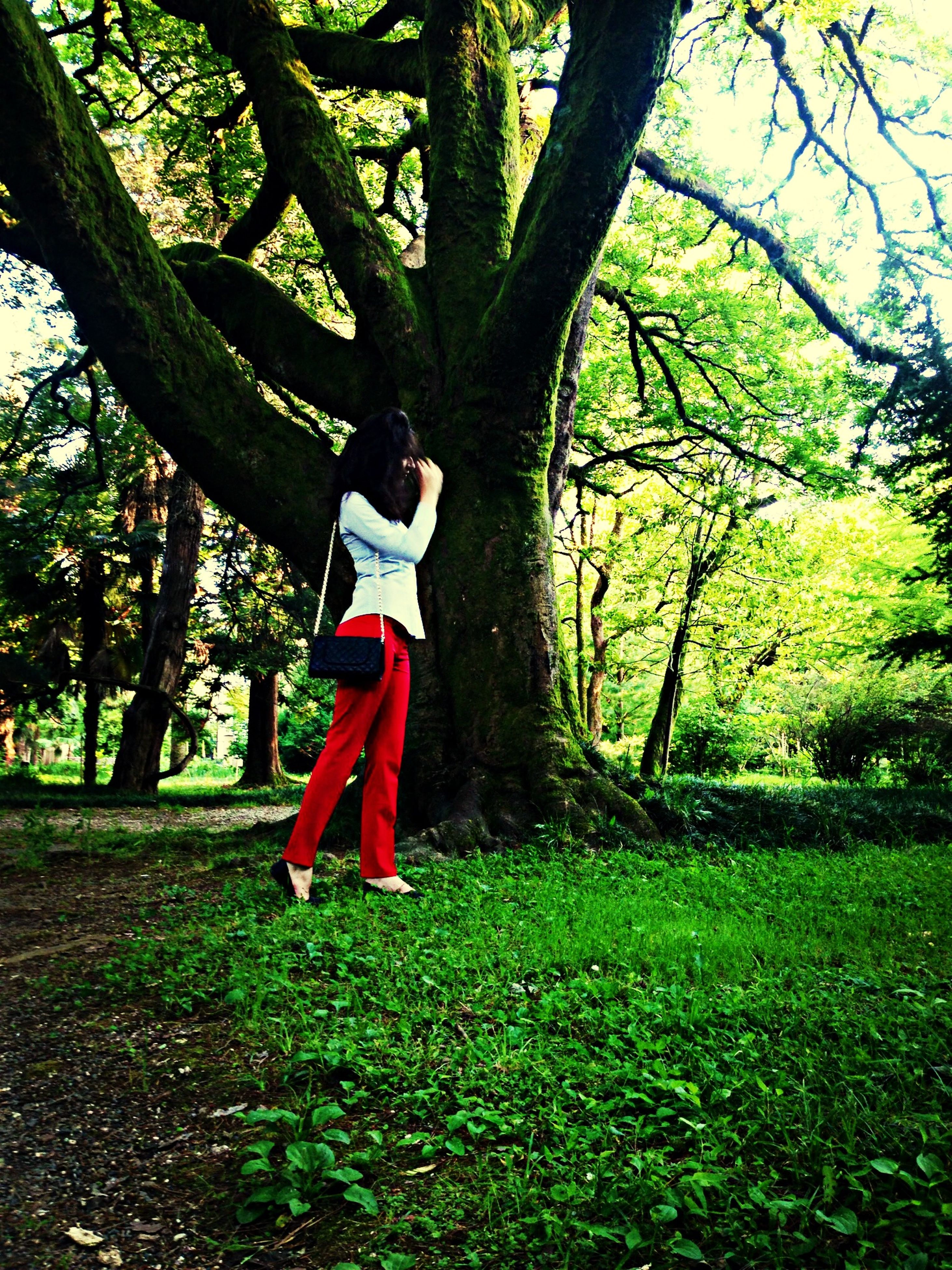 tree, full length, lifestyles, childhood, casual clothing, leisure activity, grass, park - man made space, tree trunk, girls, elementary age, growth, rear view, standing, person, nature, boys, branch