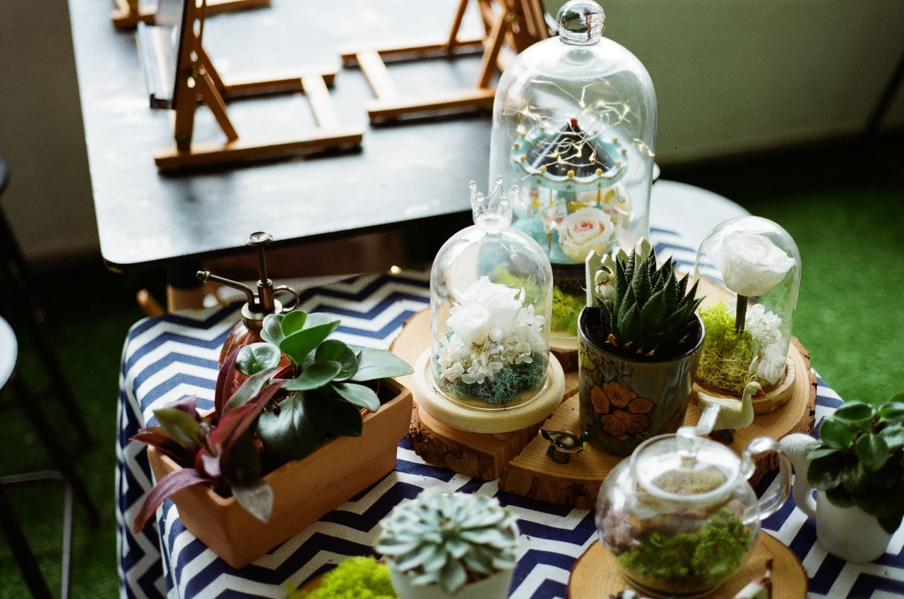 Believeinfilm Bottles Day Decoration Film Photography Filmisnotdead Freshness Glass Green Handmade Home Interior Indoors  No People Plant Table