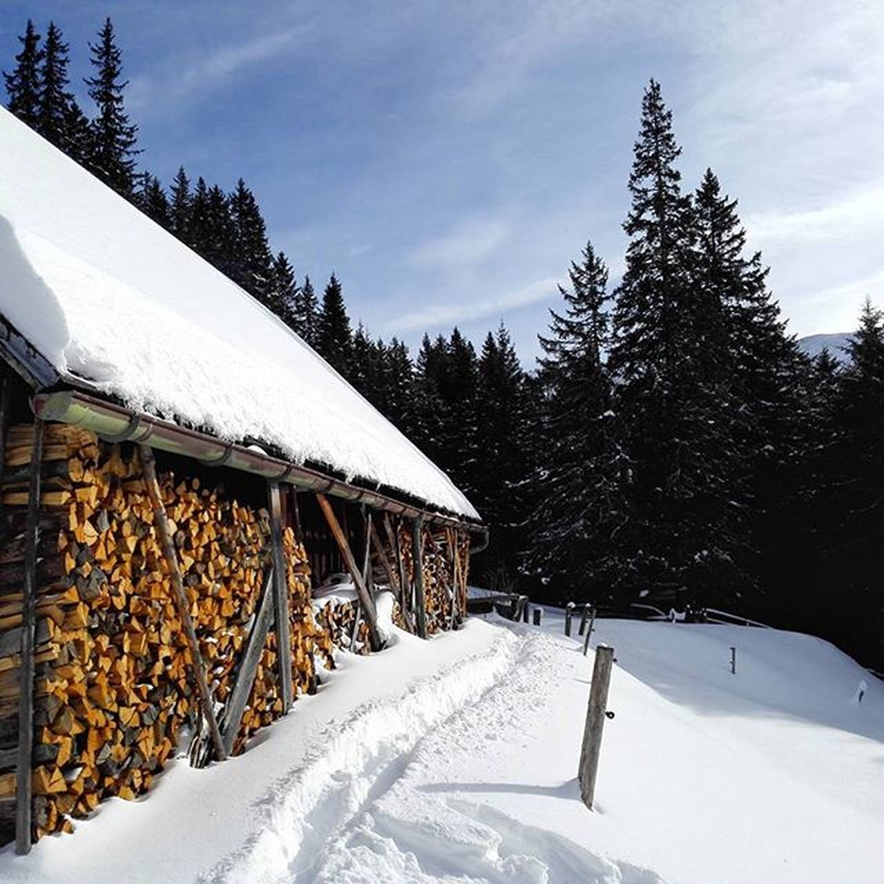 snow, winter, cold temperature, nature, tree, built structure, outdoors, mountain, beauty in nature, no people, building exterior, sky, day