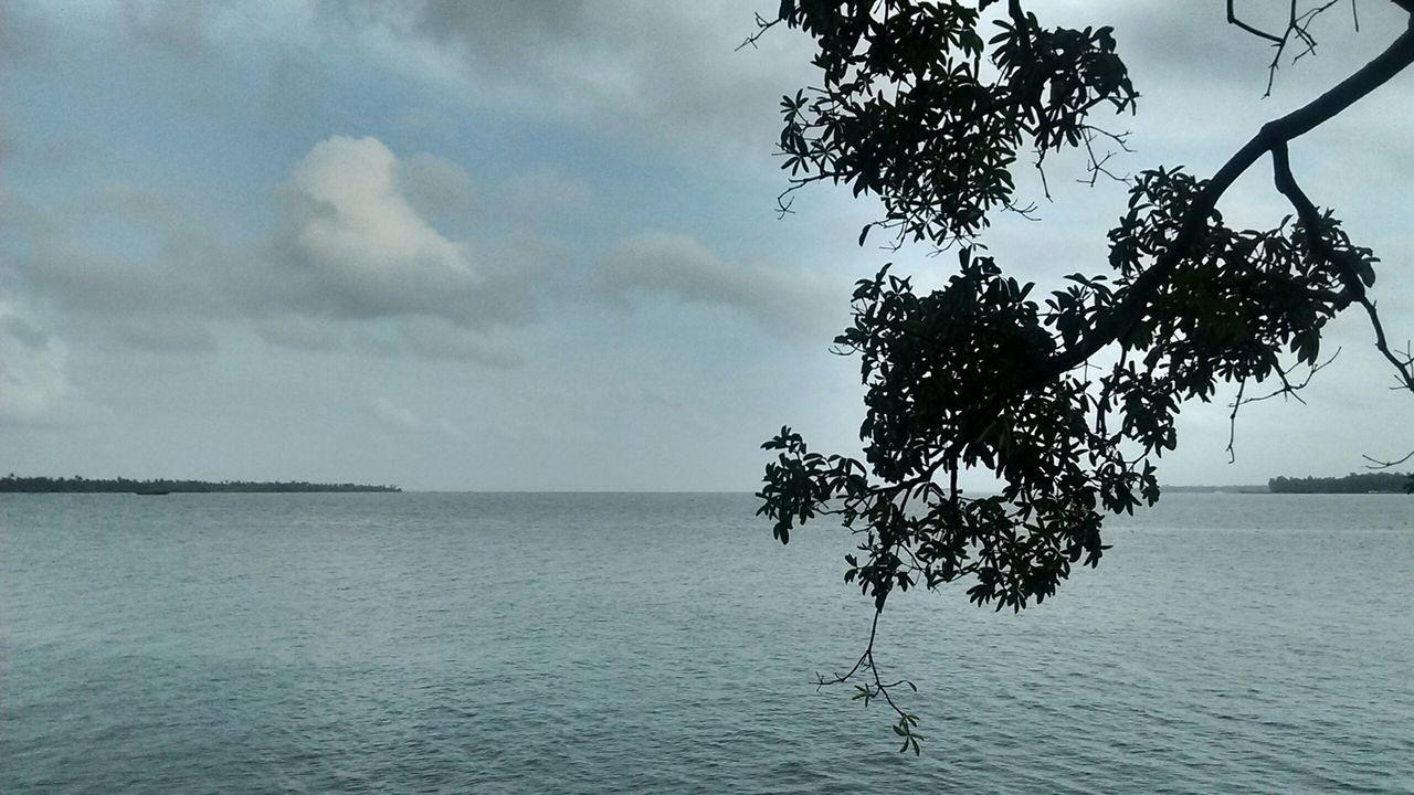 Lagoon Kumarakom Kottayam Kerala