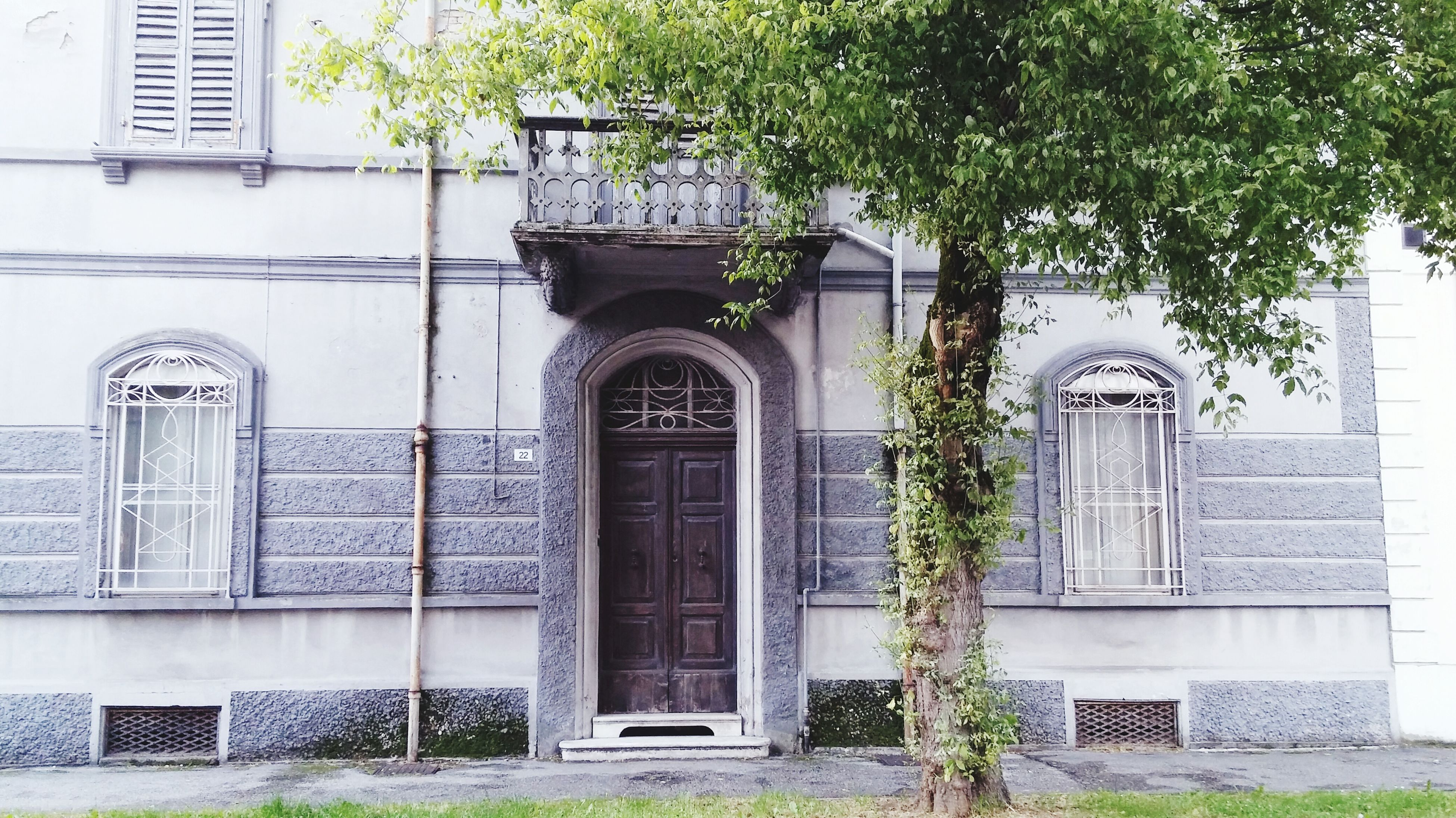 building exterior, architecture, built structure, window, door, facade, entrance, plant, house, arch, closed, tree, outdoors, day, building, residential building, no people, potted plant, growth, residential structure