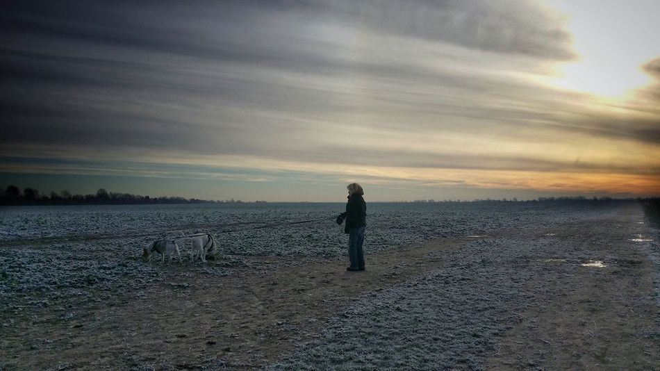 Adult Adults Only AntiM Beach Beauty In Nature Cloud - Sky Day Dog Melancholic Landscapes Men Nature One Man Only One Person One Person Watching Only Men Outdoors People Real People Sand Scenics Sea Silhouette Sky Water Wintertime