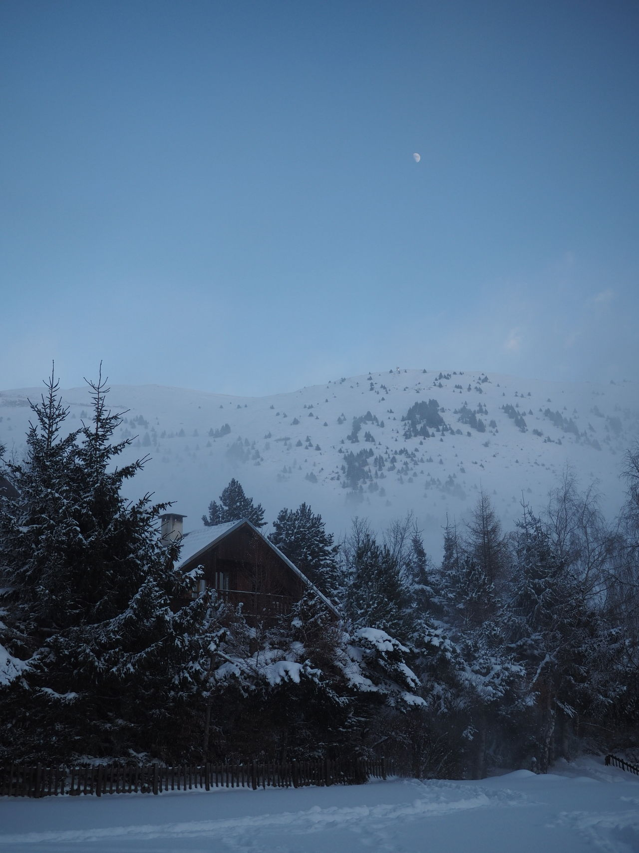 Beauty In Nature Blue Chalet Christmas Christmas Tree Cold Temperature Day Dusk Forest Holiday - Event Nature No People Outdoors Scenics Sky Snow Snowing Tree Winter
