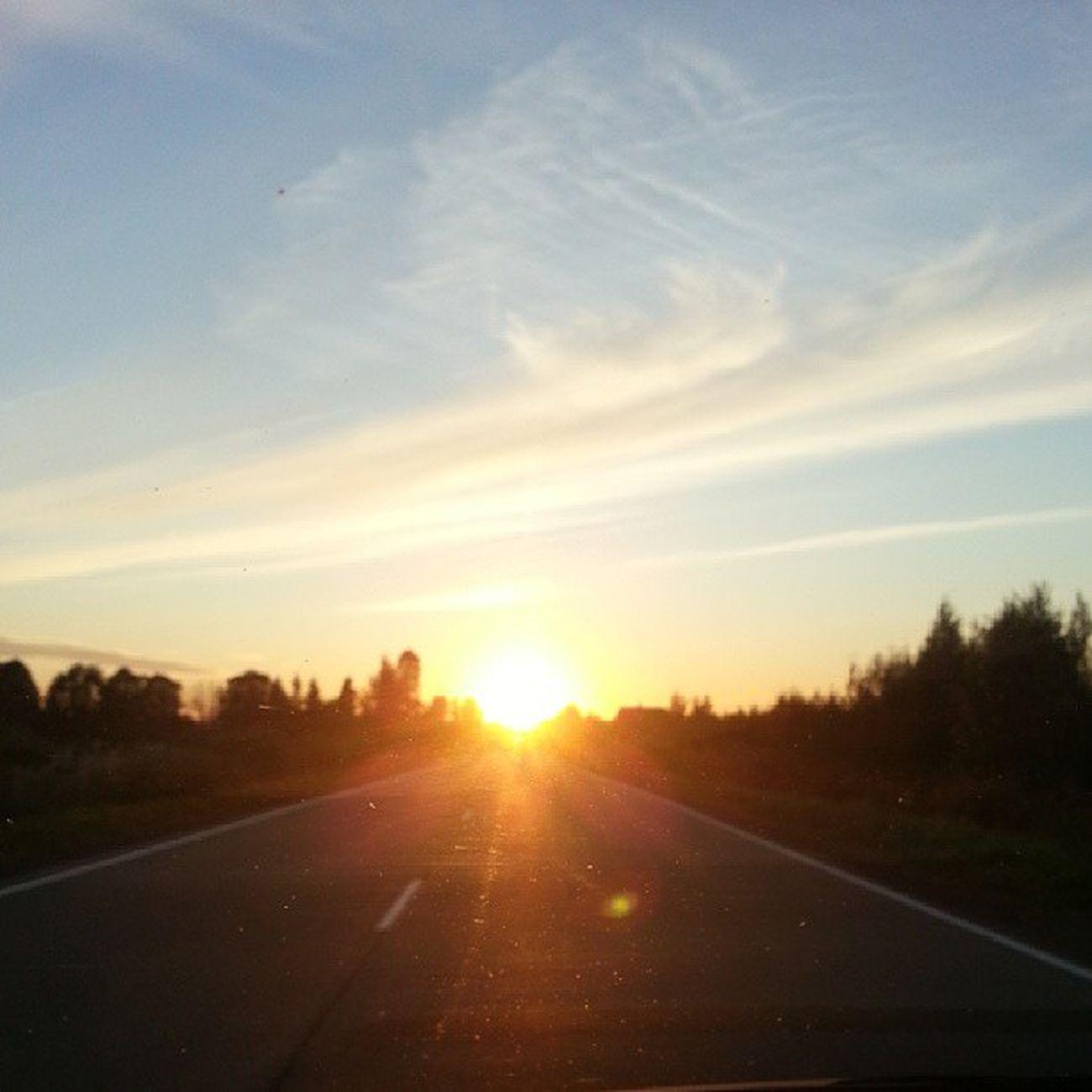 Люблю такое солнце