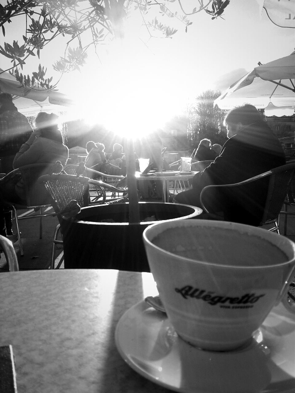 coffee cup, food and drink, drink, coffee - drink, table, refreshment, cafe, freshness, indoors, day, real people, tree, close-up
