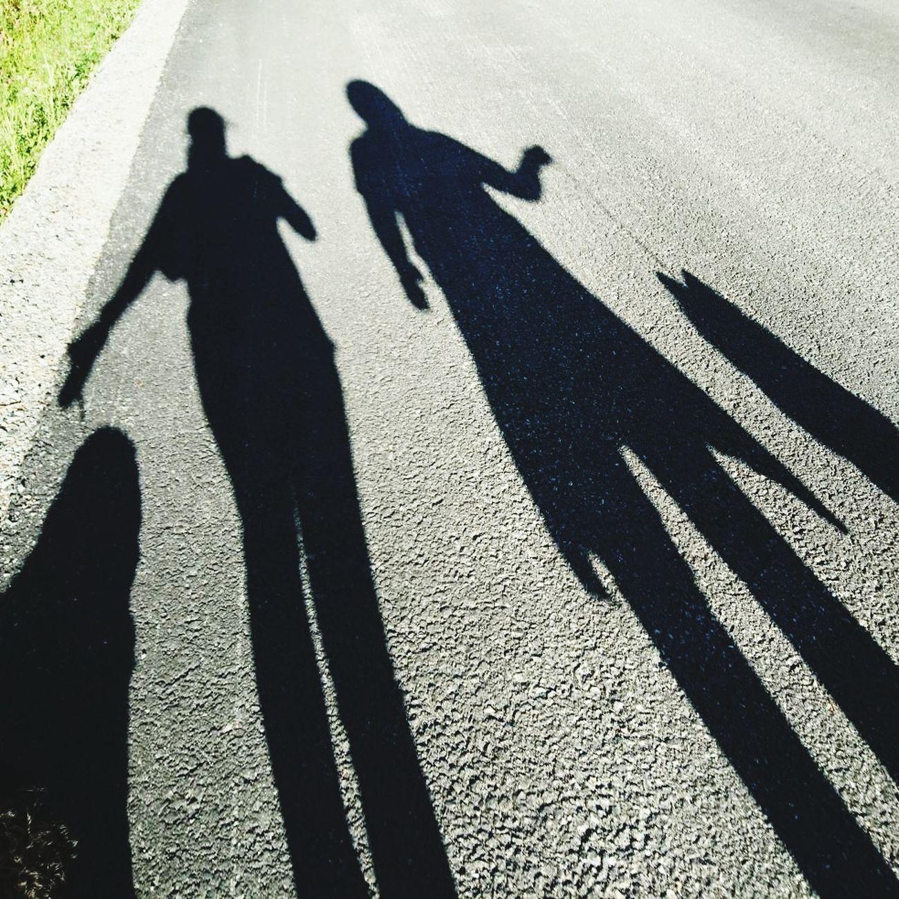 Walking The Dogs Shadow Road Summer Friends