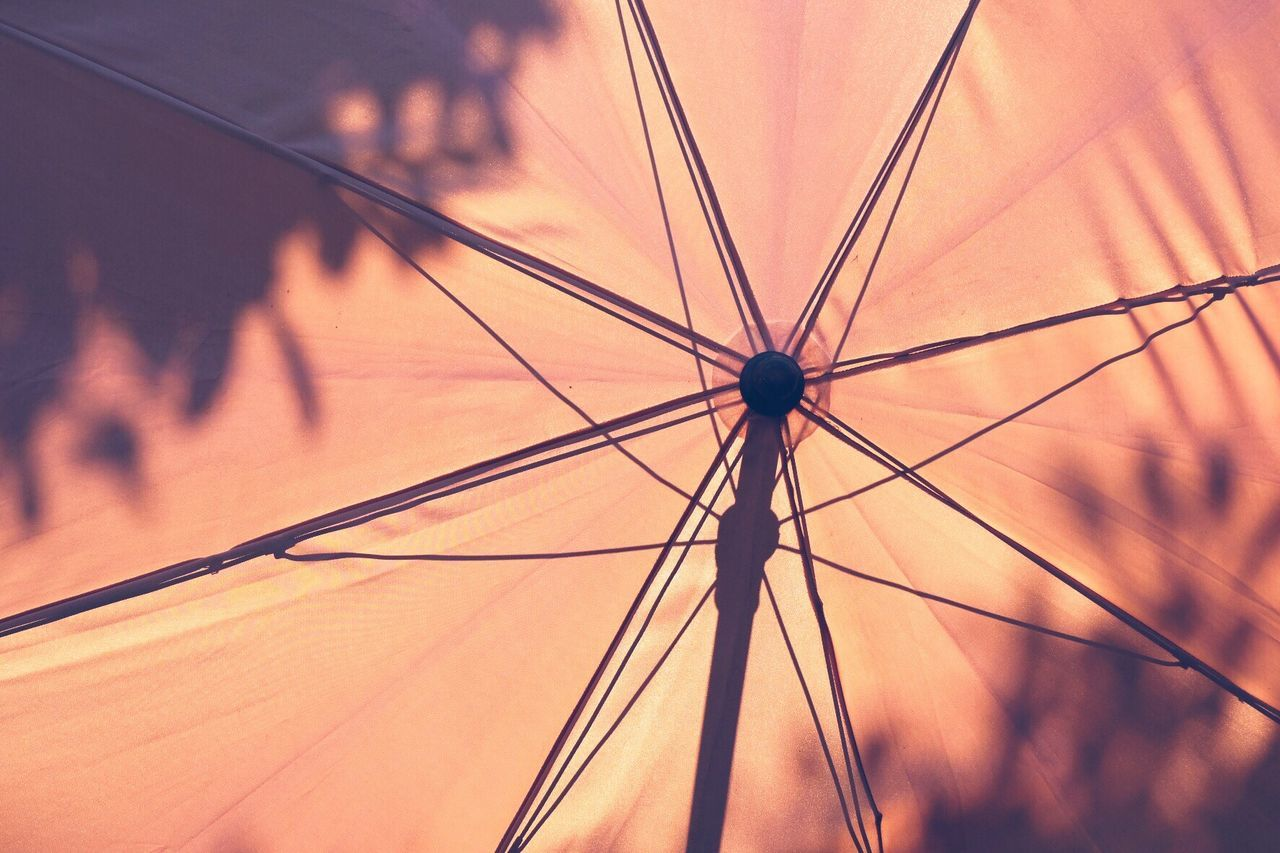 Summer nights | Umbrella Silhouette Full Frame Sun Sunlight Summer Low Angle View Outdoors Day Sunset Nature BYOPaper! EyeEm Gallery Taking Photos Eyeemphotography Eye4photography  The Great Outdoors - 2017 EyeEm Awards Backgrounds Tranquility