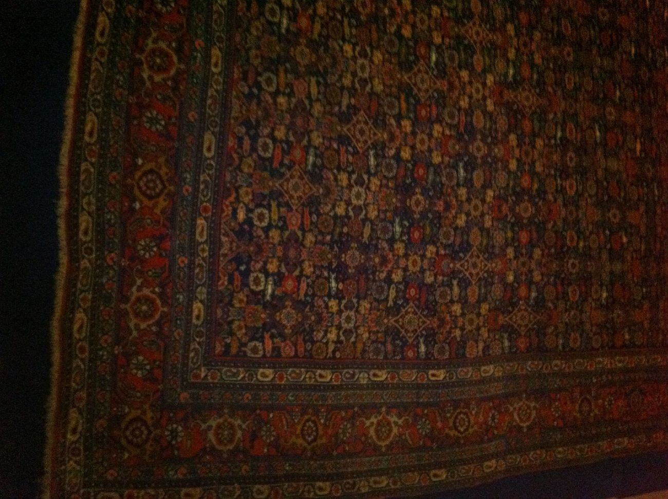 A Precious Bidjar Carpet In The Tehran Carpet Museum. It's Twin Is In Our Byblos Home.