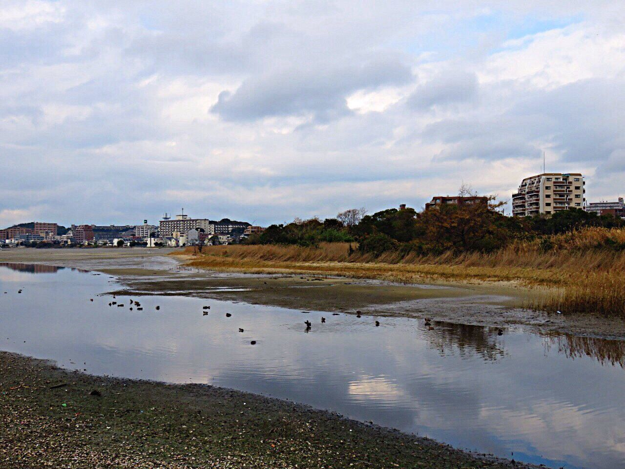 Waterreflections  Skyreflection River River View Birds Clouds Sky Sky_collection Sea Seaside Seascape Sea And Sky Clouds And Sky Reflection Wajirohigata 和白干潟 干潟の風景 鳥 反射