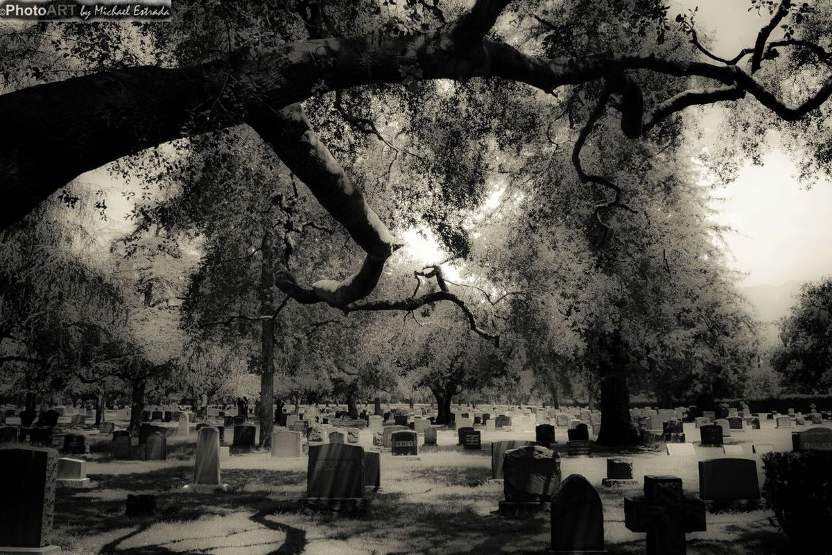 Dominion of the Spirits Rest In Peace Series EyeEm Best Shots - Black + White Cemetery Blackandwhite