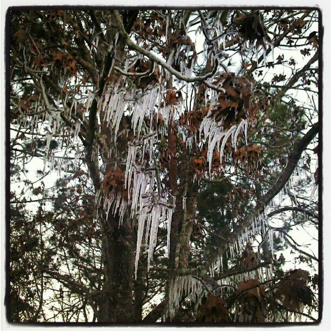 Home made icicles!!!
