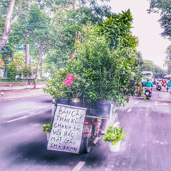 The Following My Commute Streetphotography Bymathieung Saigon, Vietnam Feel The Journey Saigonese Saigon Gardens Taxi