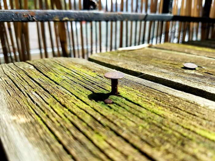 EyeEmNewHere No People Green Color Mossy Close-up Textured  Ground Shot Architecture NailedIt Old Wood Details Dystopian