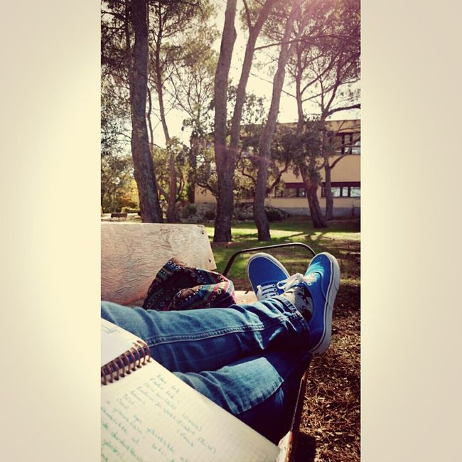 Studying Taking Notes Enjoying Life Relaxing