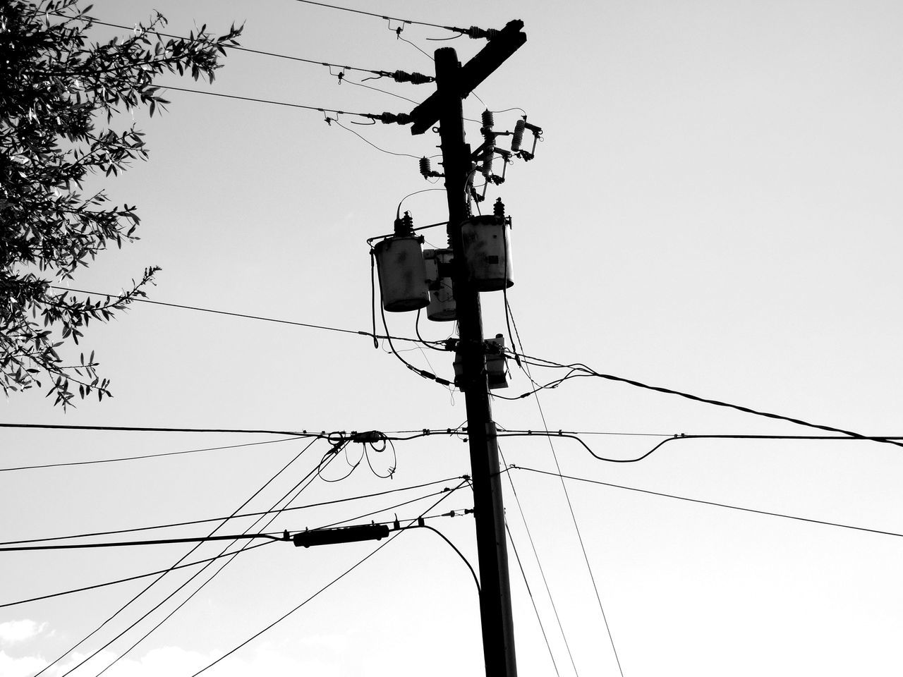 Monochrome Photography Blackandwhite Telephone Pole Telephone Wires Telephone Lines Outdoors Streetphotography Light And Shadow Darkness And Light On The Road Lines Lines And Angles Directly Above Sky Looking Up Sunny Day Notes From The Underground Beauty In Ordinary Things Above The City Random Acts Of Photography Communication Connection Florida Adapted To The City Power Lines