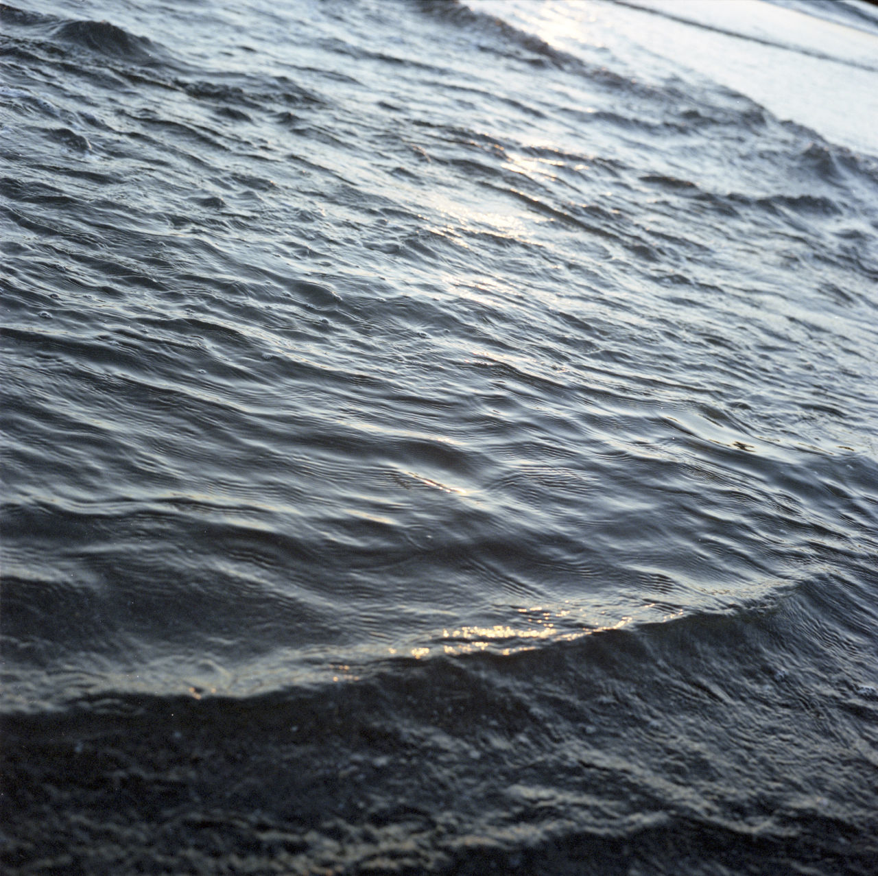 water, wave, motion, nature, sea, no people, waterfront, day, outdoors, beauty in nature, close-up