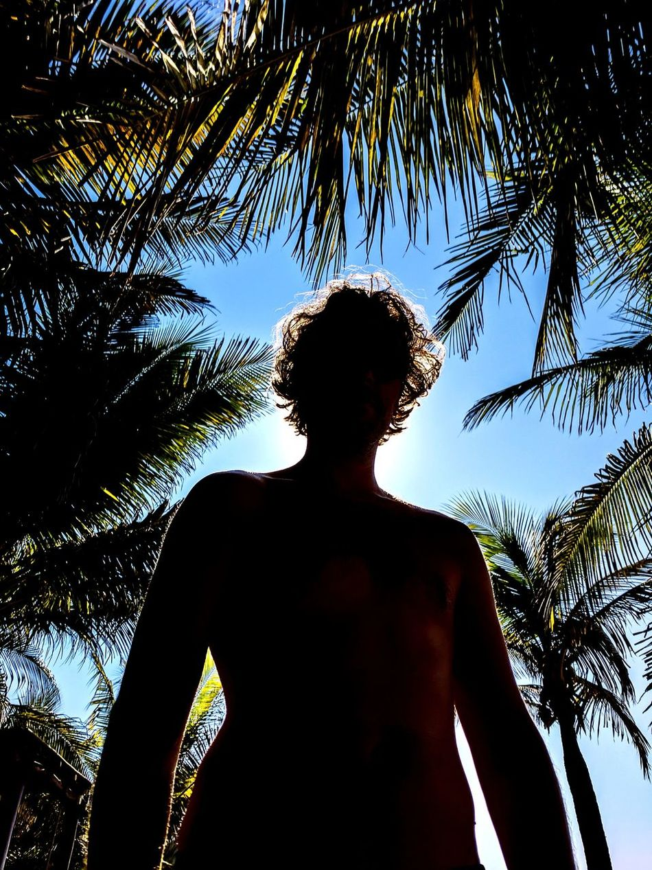 Adios Aamori Vacations Portrait Sky Palm Tree Mexico Silhouette Shadow Low Angle View Paradise