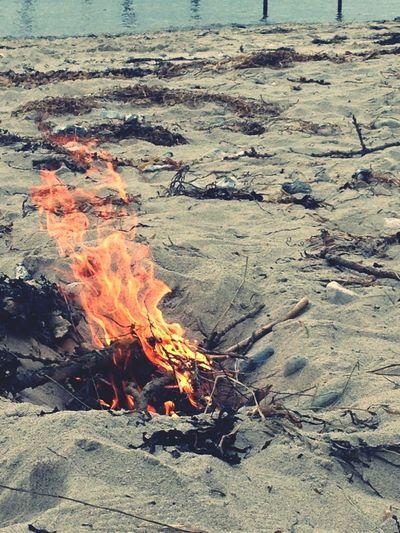 Bonfire!