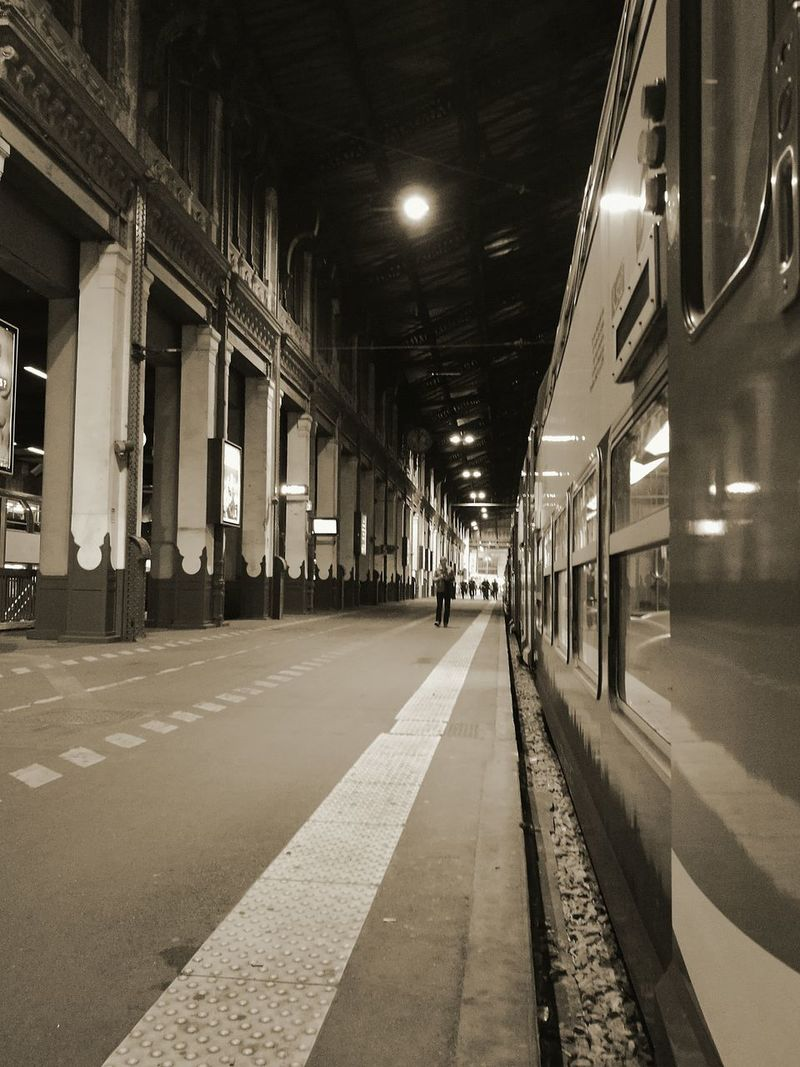 Public Transportation Indoors  Railroad Station City Architecture Night Train Paris, France  Garedelyonparis RER D First Eyeem Photo