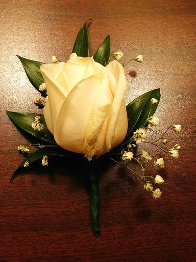 Wedding rose Streamzoofamily Wedding Photography Photography Flowers