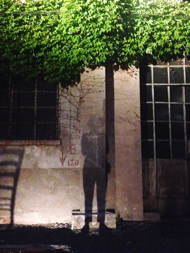 Me again! - Shadow Self Portrait Plant Industrial Space EyeEm Enjoying Life Chill