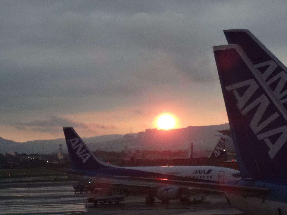 Airplane Airport Airport Runway All Nippon Airways Japan Sunset