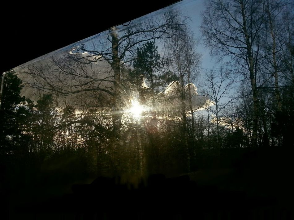 The view from my big window where I lay in my caravan.... laying there looking and listening to the sounds of nature! ♡ Enjoying Life From My Point Of View Dreaming Wishing.. Thats What I Want Want More Needs Live Life To The Fullest Favourite Places My SAVIOR