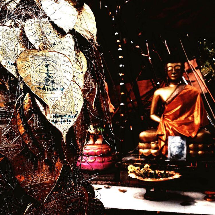 Buddha Buddhism Temple Chiangmai Thailand Bodhitree Bodhi  Wiangkumkam