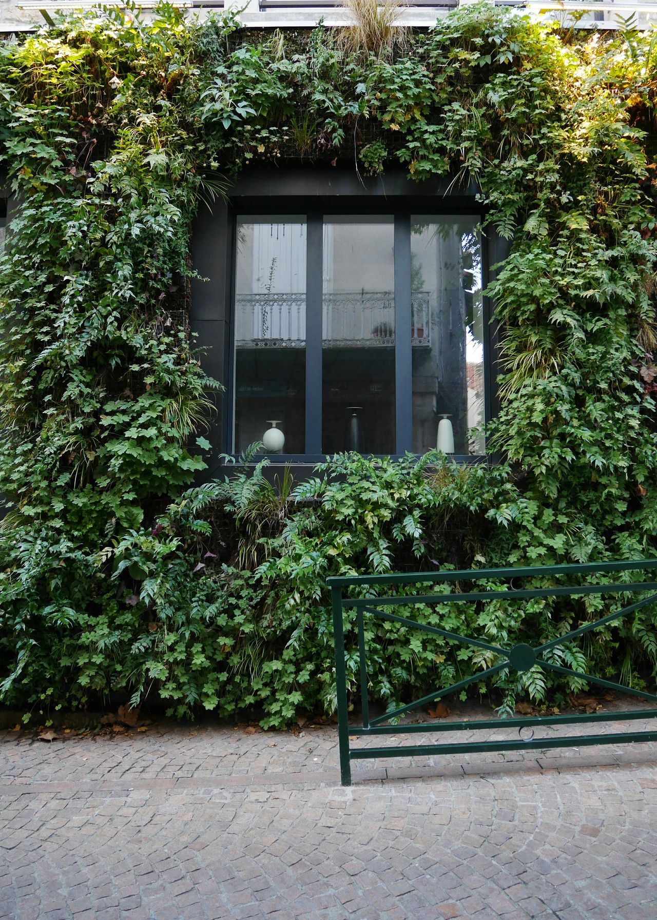 Green Wall Villefranche De Rouergue Green Color Window Building Exterior Plant Growth No People Built Structure Architecture Outdoors Architecture_collection Architecturelovers Cityscape Cityscapes Aveyron Plants Streetphotography Architecture Facadelovers Travel Destinations Architectural Feature Vegetal Architectural Detail Nature