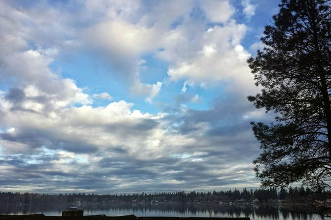 """""""Clouds come floting to my life, no longer to carry rain or usher storm , but to add color to my sunset sky""""American Lake Clouds And Sky Clouds Collection Fluffy Clouds Tree And Sky Lake View"""