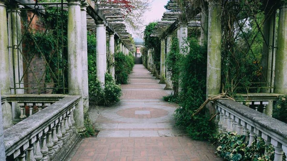 Pergola And Hill Gardens Golders Hill Park Hampstead Heath London LONDON❤ The Way Forward Tree Plant Built Structure Architecture Day Outdoors No People Nature Relax The Secret Spaces