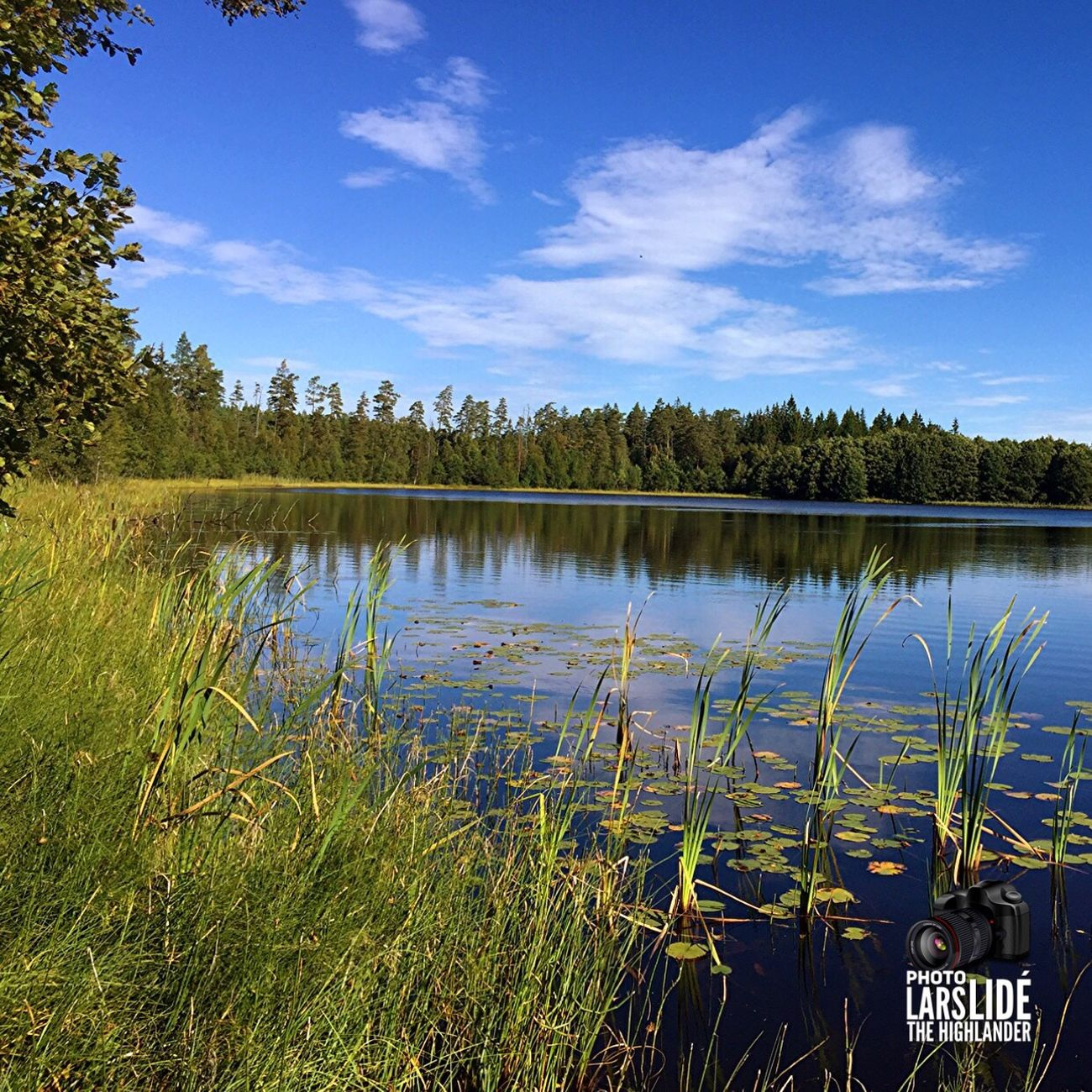 Water Lake Tree Blue Sky Grass Beauty In Nature Nature Countryside Outdoors Landscape_Collection Nature_collection Enjoying Life Taking Photos