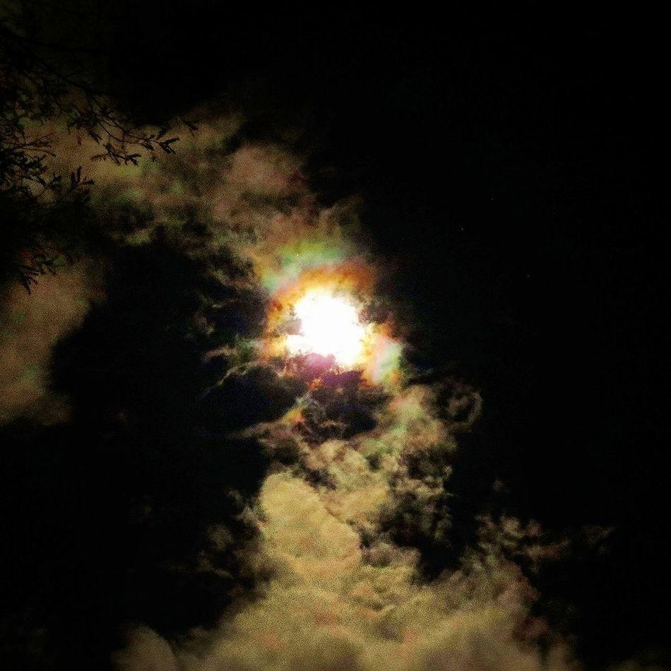 Luna http://www.miramundoweb.com