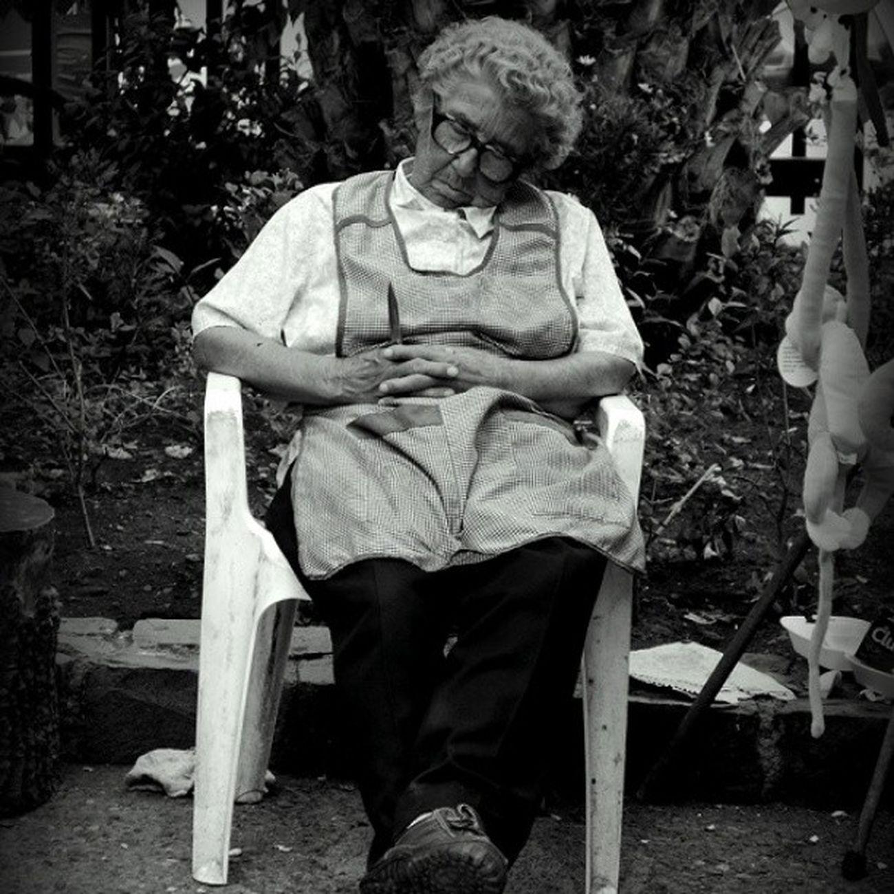 Sleep Sleep Granma Abuela Dormir