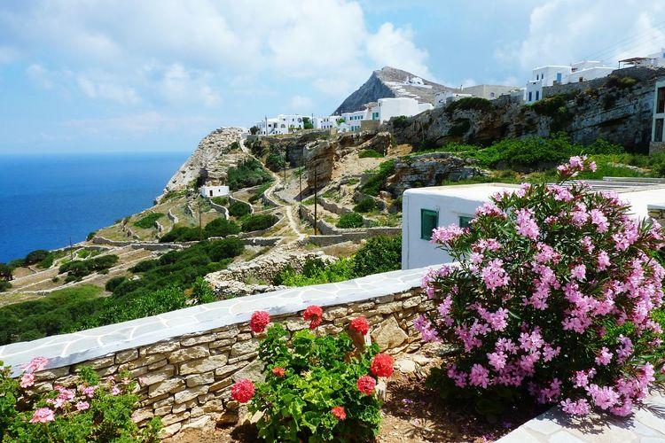 Greece Greece Landscapes Flower Mountain Nature Travel Destinations Folegandros
