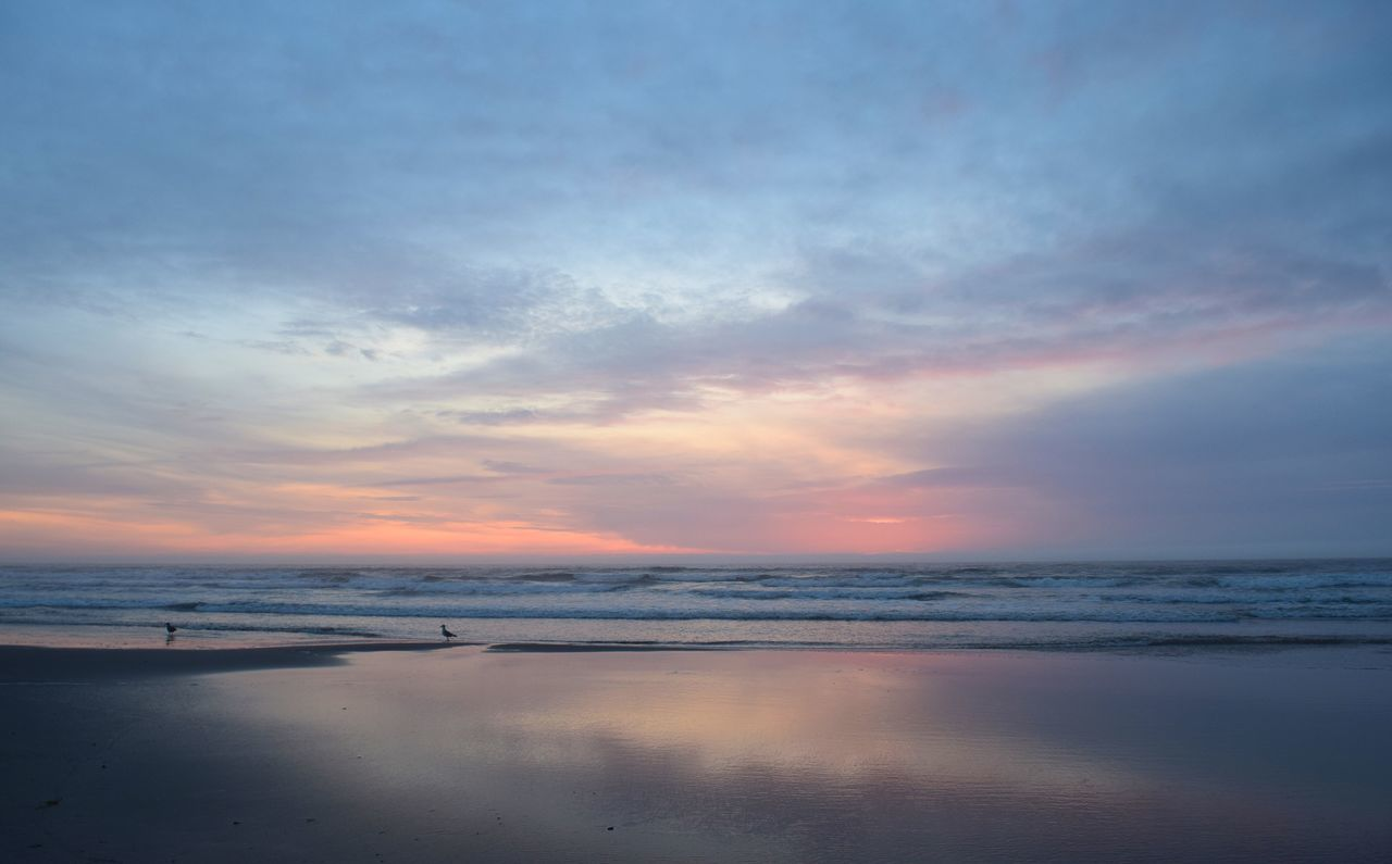 Agate Beach  Newport Oregon Oregon Coast Streamzoofamily Sea Sky Sunset Water Nature Tranquility Beauty In Nature Scenics No People Tranquil Scene Outdoors Beach Horizon Over Water Scenery Sunset_collection Seagulls Birds EyeEm Best Shots - Landscape Nature_collection Ocean