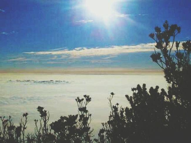 Hikingtrip MountainViewBeautiful RelaxingInTheSun Backtonature 😊♡