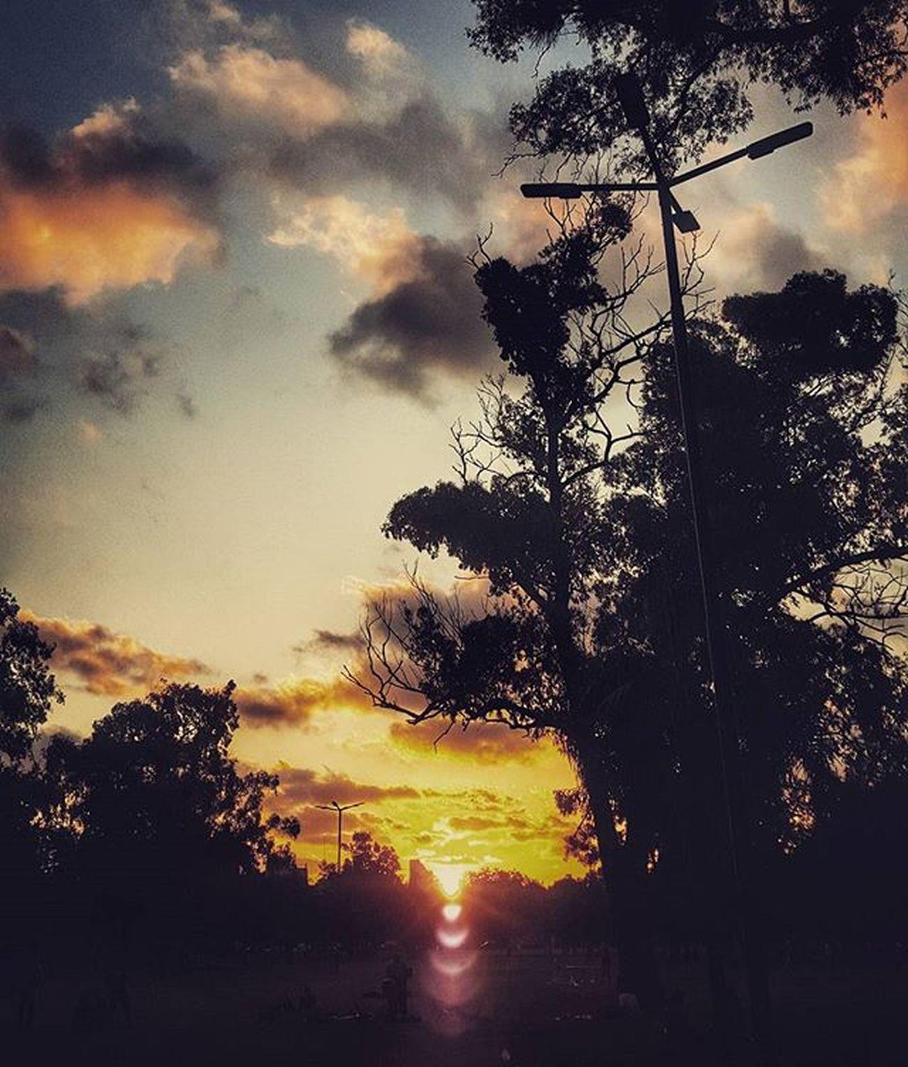 Buen domingo para tod@s! Trees Contrast Siluette Instamoment Instadaily Picoftheday Sundown Atardecer Mirror Belgrano Naturelovers Igersargentina Igcapturesclub Igbuenosaires Ig_buenosaires Ig_captures Argentina_estrella Bestsunsets World_bestsunset Sunsetporn Sunset_ig Goldensky Nubesdetuciudad Cloudporn Worldbestsunsets