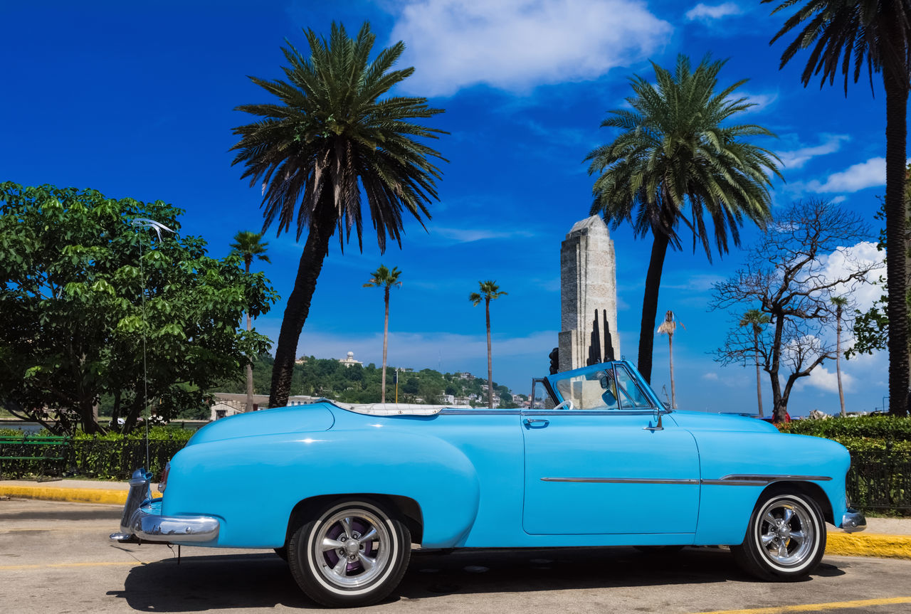 car, palm tree, transportation, blue, vintage car, tree, land vehicle, mode of transport, day, luxury, collector's car, stationary, outdoors, no people, sky