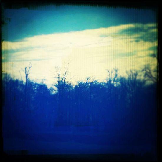 My drive today :) Scenery Shots Winter Canada Trees