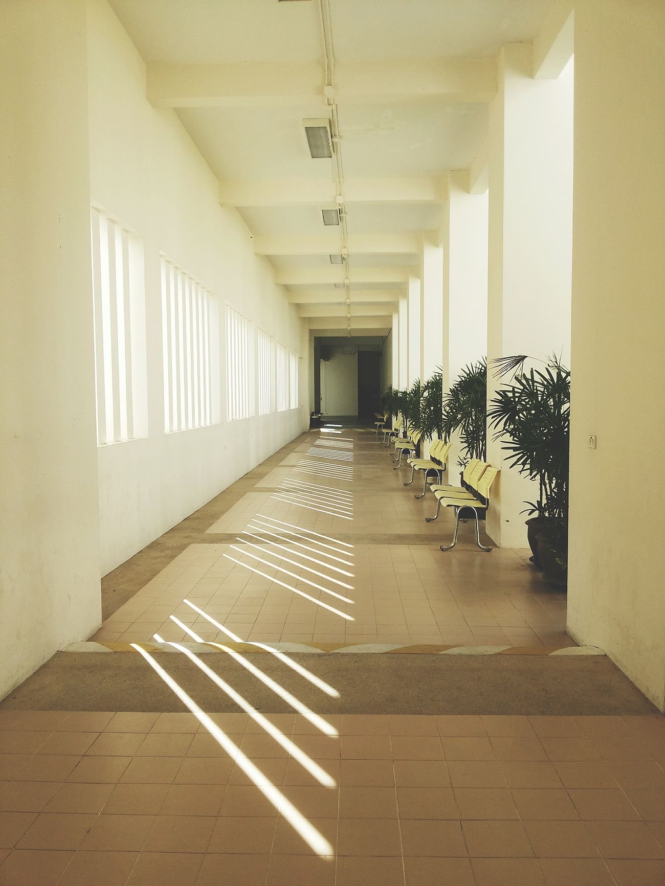 Light & Shodow Window Sunlight Shadow Exit Sign The Way Forward