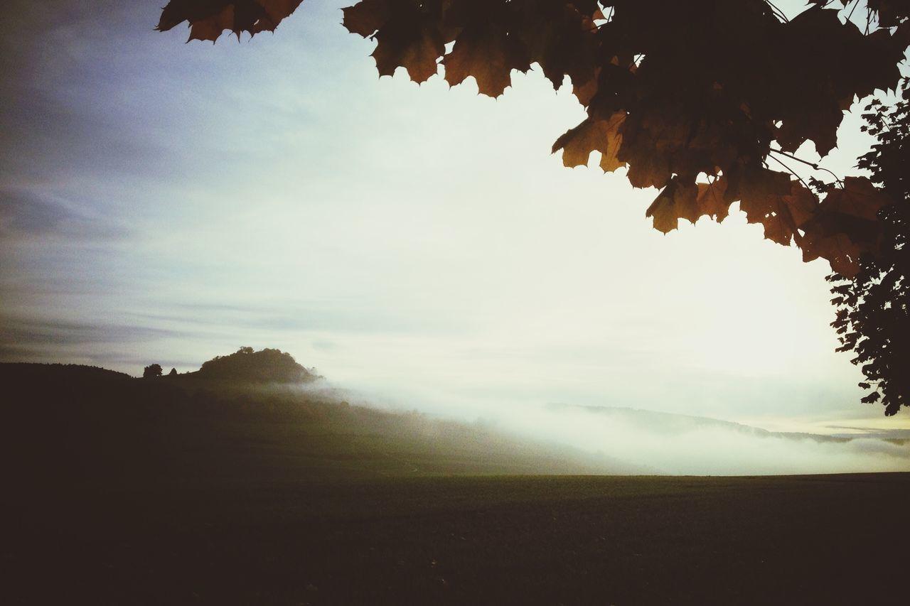 Colors Of Autumn Autumn EyeEm Best Shots Melancholic Landscapes