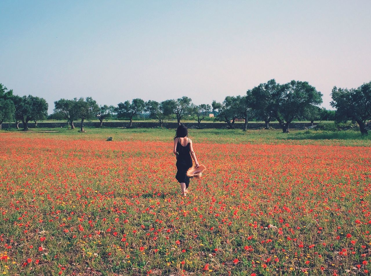 Beautiful stock photos of freedom, Beauty In Nature, Casual Clothing, Copy Space, Day