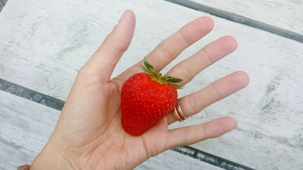 human hand, human body part, food and drink, holding, one person, food, healthy eating, human finger, fruit, real people, strawberry, red, freshness, high angle view, close-up, indoors, lifestyles, day, ready-to-eat, people