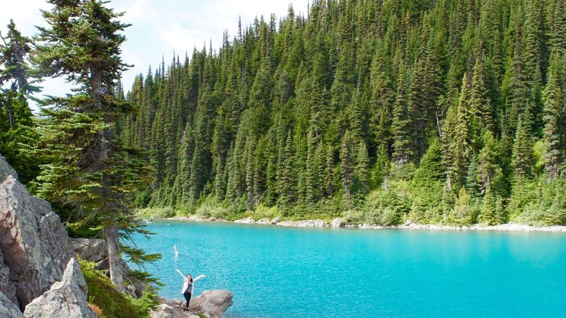 Blue Tree Tranquil Scene Water Summer Calm Turquoise Colored Beauty In Nature Tranquility Nature Hike Garibaldi Lake