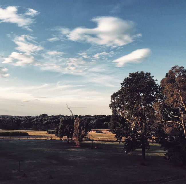 Windsor NSW. Taking Photos IPhoneography On The Road Vscocam Landscape