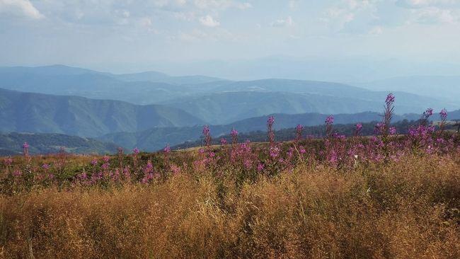 Climbing A Mountain Srbija Serbia Mycountry Staraplanina Mountains Mountain Srbijauslikama Enjoyingtheview Landscapes