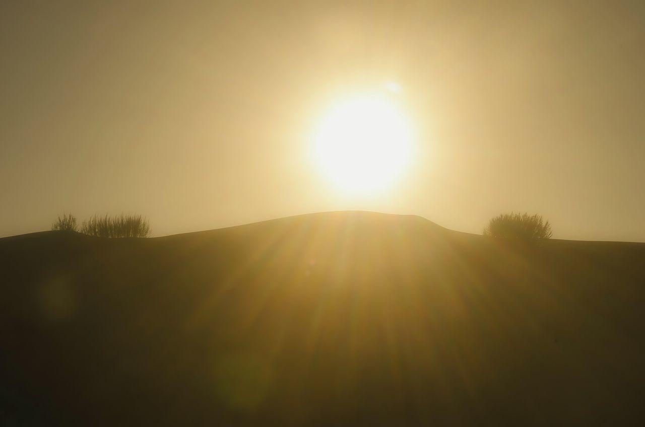 Sun Beauty In Nature Nature Tranquil Scene Sunlight Sunset Idyllic Tranquility Growth Outdoors Landscape Scenics No People Silhouette EyeEm Best Shots - Nature Masterclass EyeEm Gallery EyeEm Best Shots Original Experiences Getting Inspired My Unique Style Desert Beauty Desert Landscape Cloud - Sky Bokeh Background